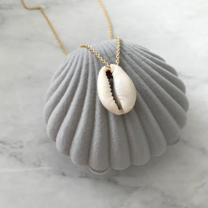 Seashell Necklace in Shell Box