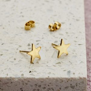 moon pig star earrings  resized for ptd