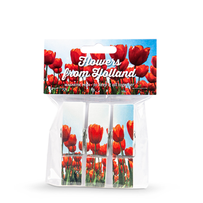 Magnet pegs Tulips